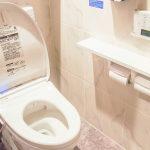 トイレの製品の特徴とおすすめ